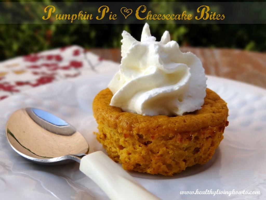 Pumpkin Cheese Cake Bites  Pumpkin Pie Cheesecake Bites HLHT