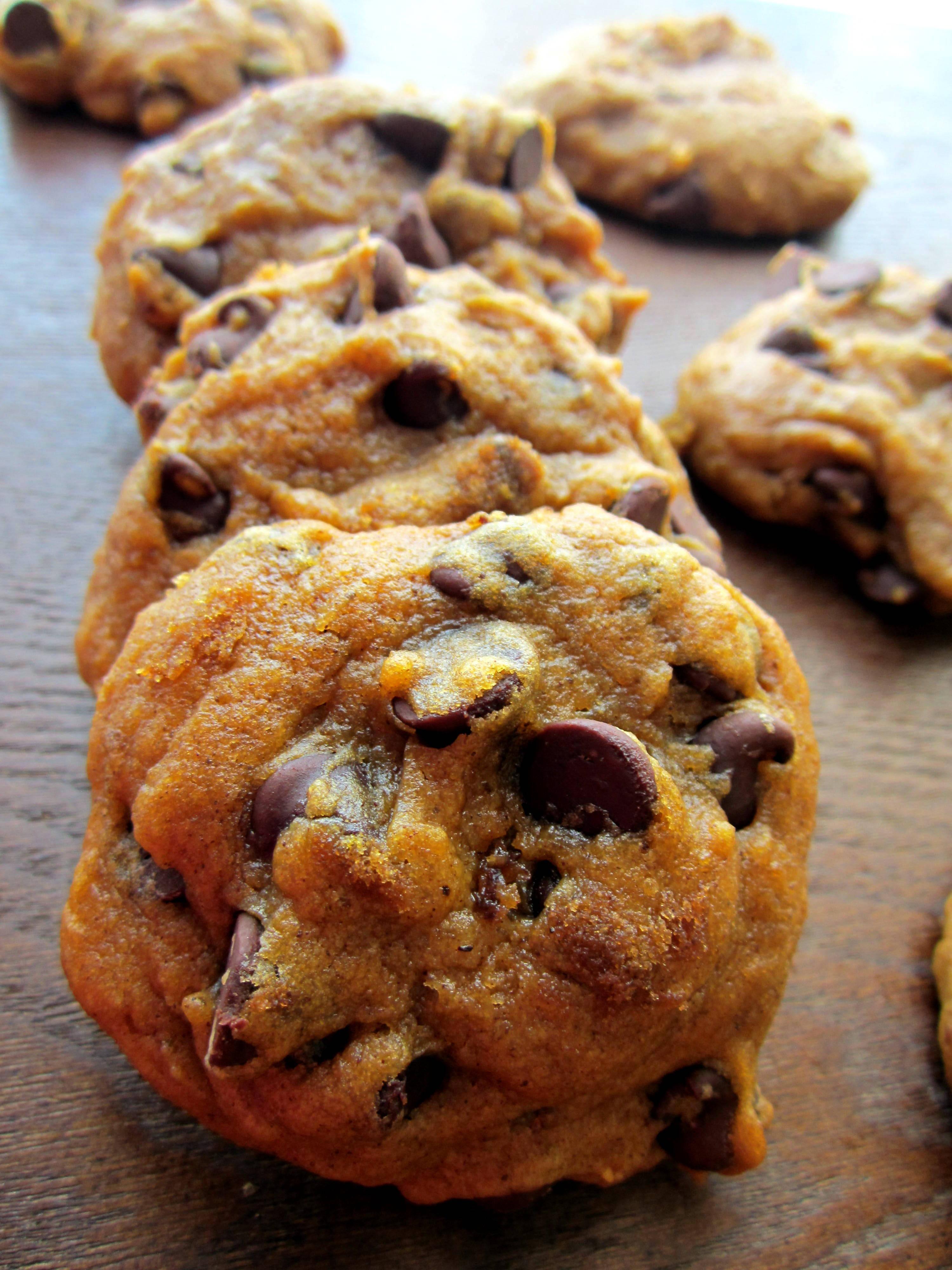 Pumpkin Cookies Recipe  Pumpkin Chocolate Chip Cookies