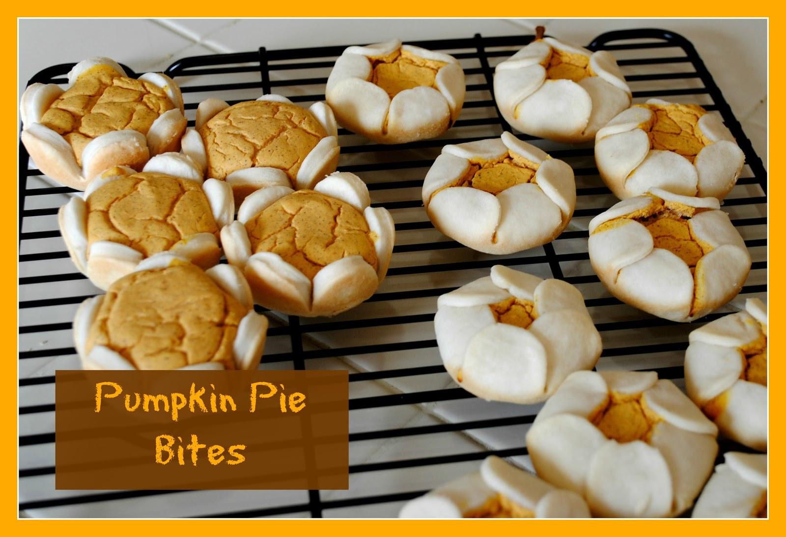 Pumpkin Pie Bite  Delectably Home Pumpkin Pie Bites