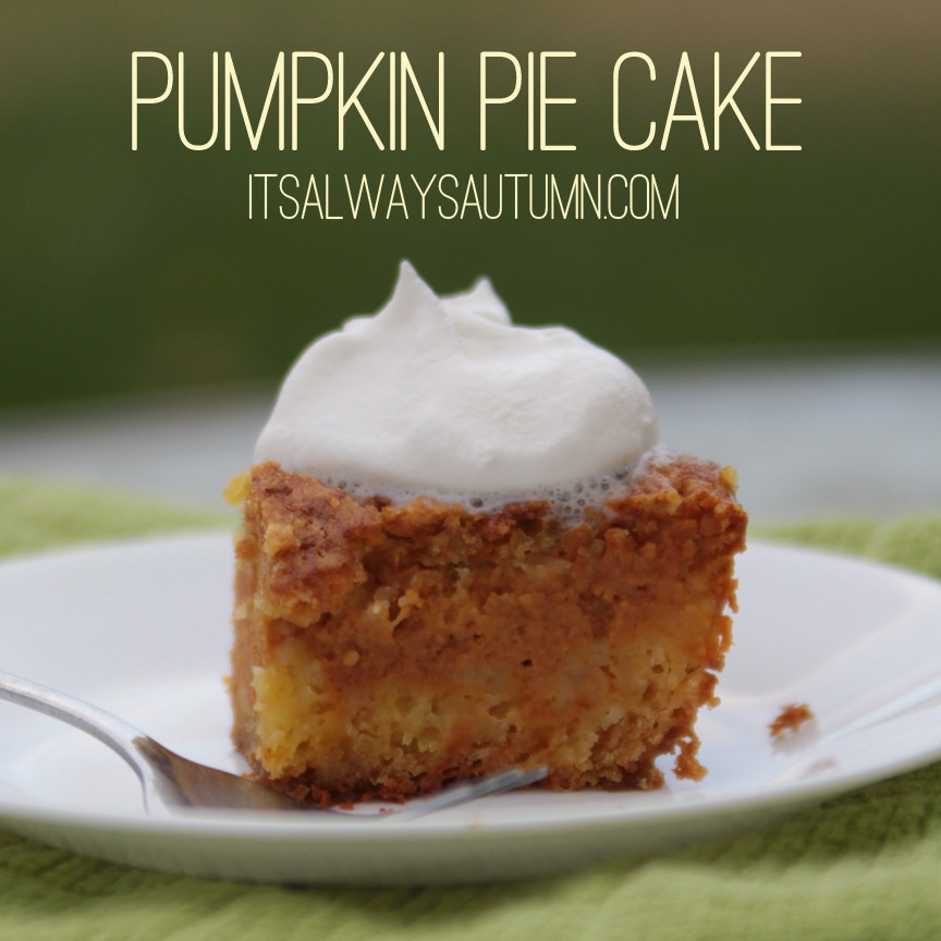 Pumpkin Pie Cake Recipe  pumpkin pie cake It s Always Autumn