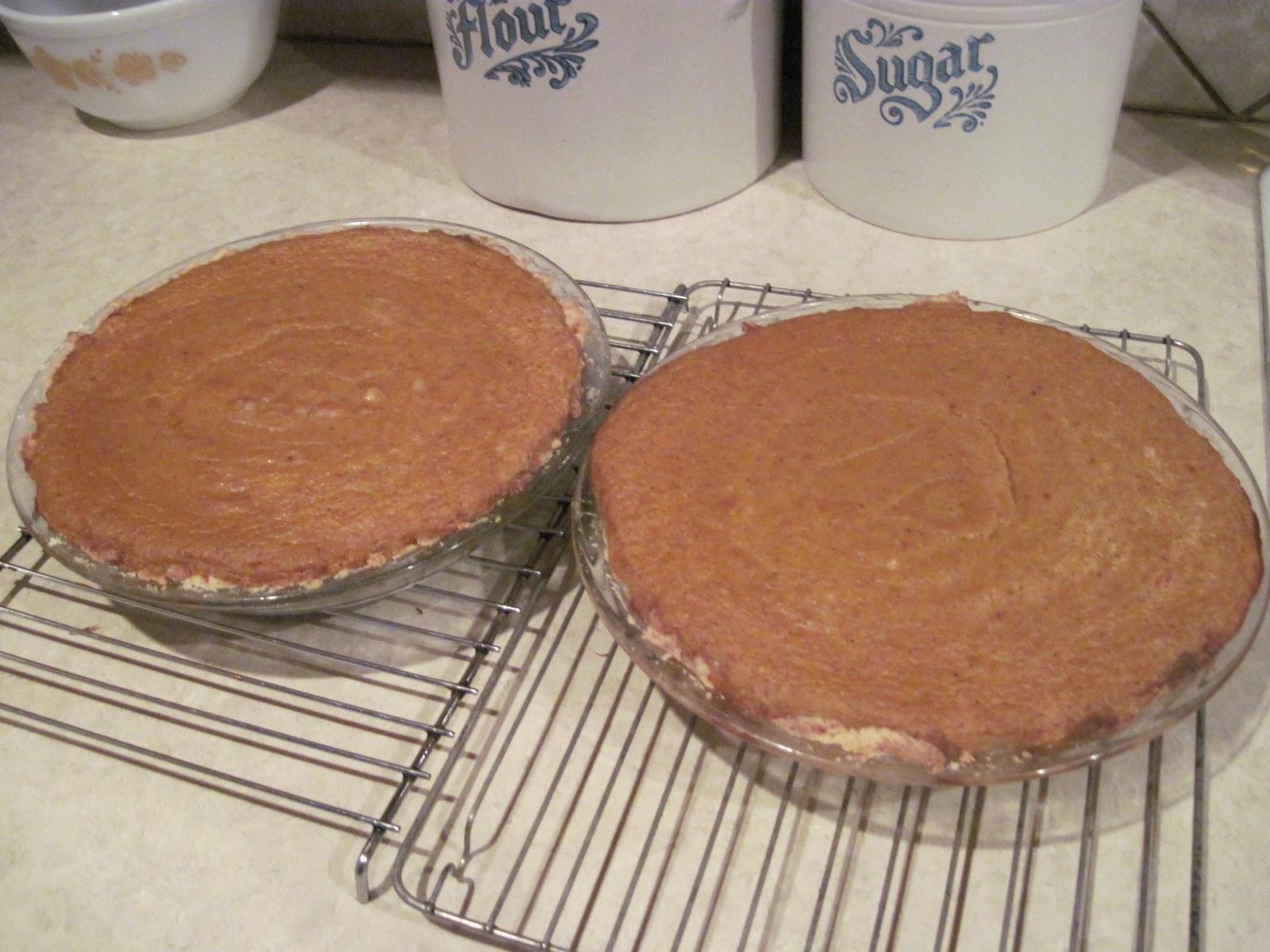 Pumpkin Pie Condensed Milk  Mum in Bloom Pumpkin Pie without Evaporated Milk
