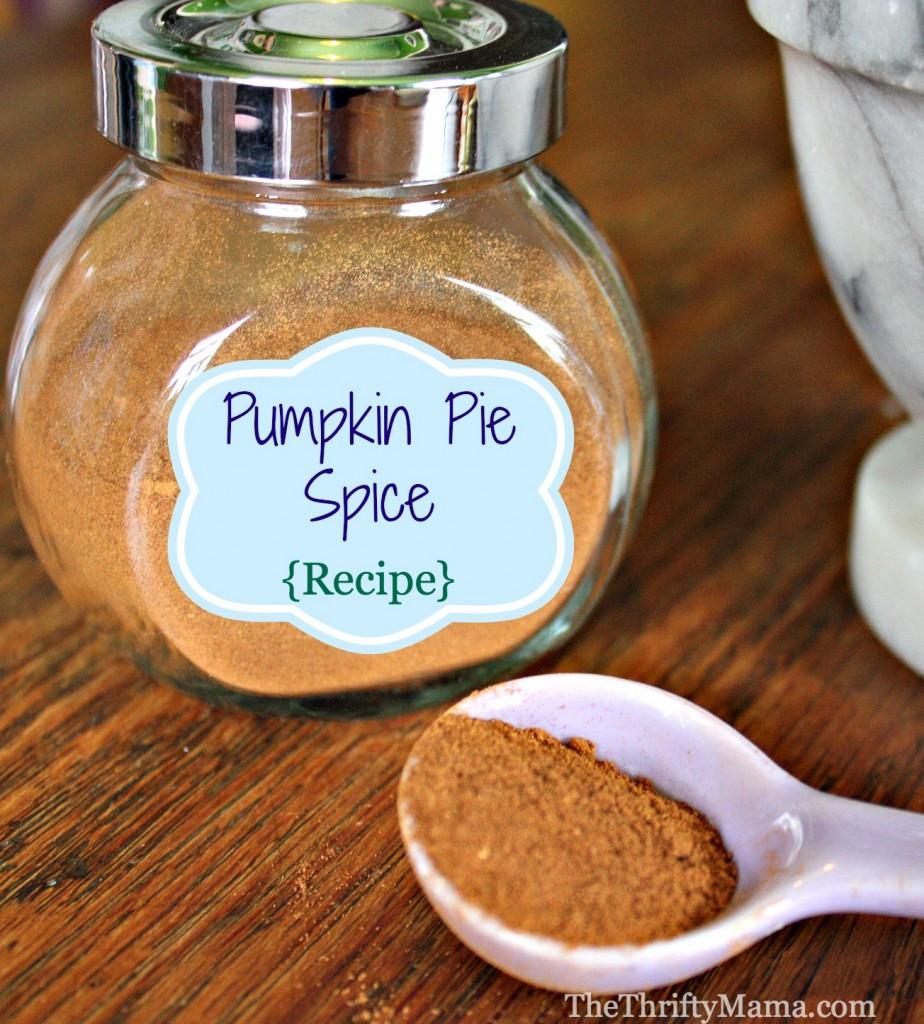 Pumpkin Pie Ingredients  Pumpkin Pie Spice Recipe Natural Thrifty