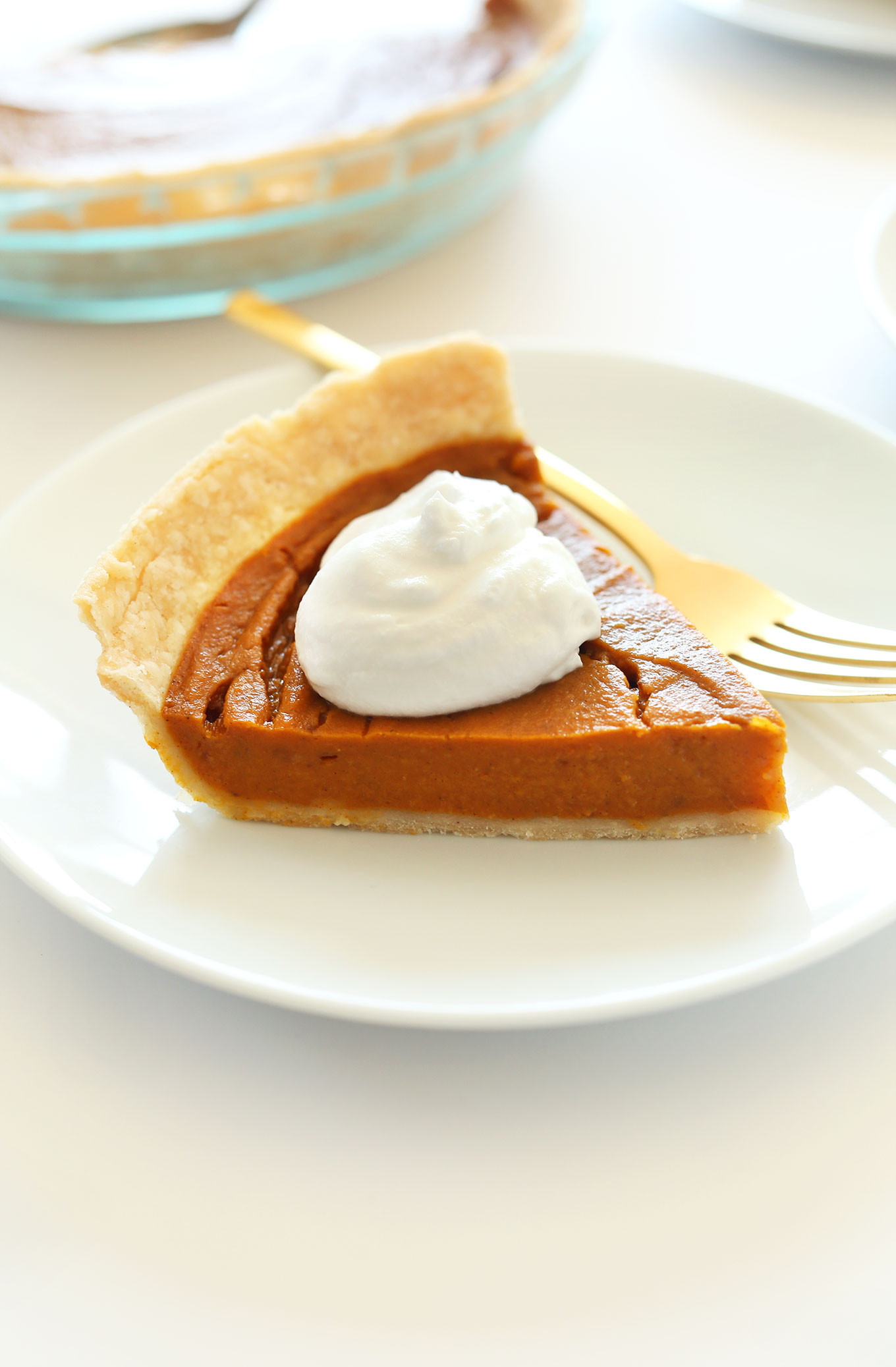 Pumpkin Pie Ingredients  7 Delicious Pie Recipes for Your Gluten Free Holiday Guests