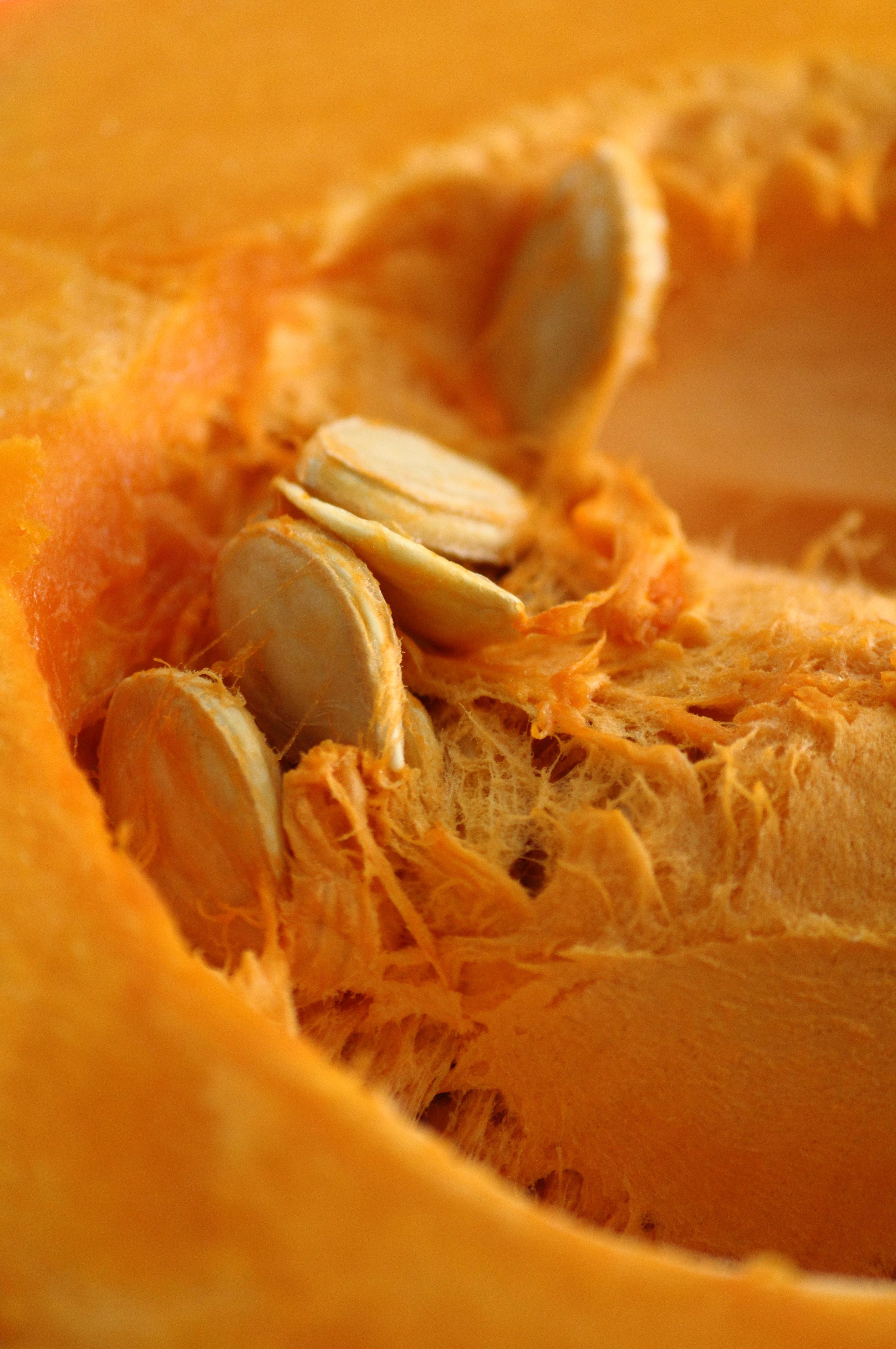 Pumpkin Pie Recipe With Real Pumpkin  Pumpkin Pie Recipe Using Real Pumpkin Women s Suite