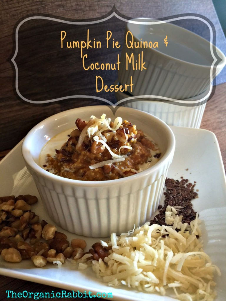 Pumpkin Pie With Coconut Milk  pumpkin pie quinoa coconut milk protein breakfast dessert
