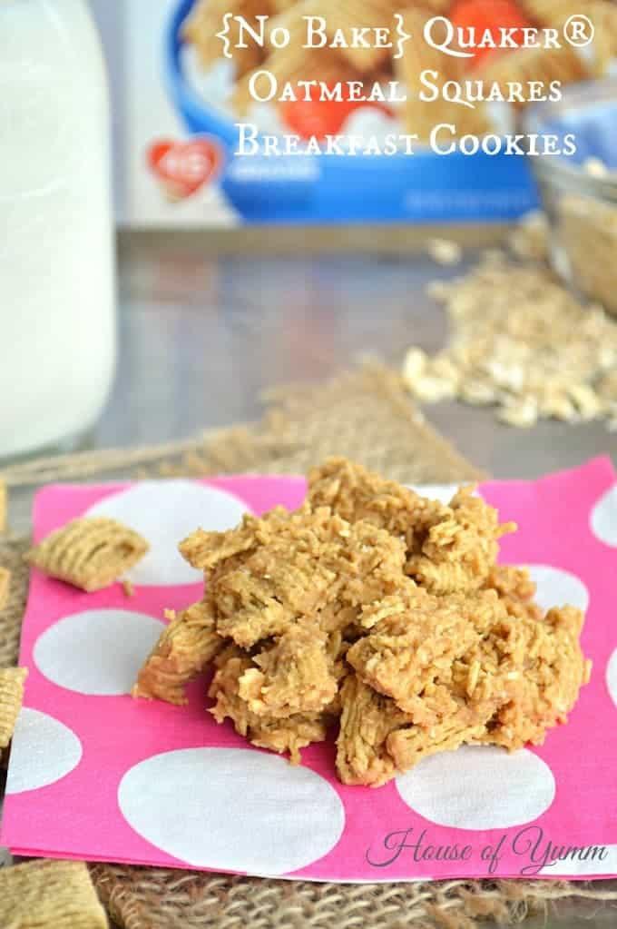 Quaker Oats Breakfast Recipes  No Bake Quaker Oatmeal Squares Breakfast Cookies
