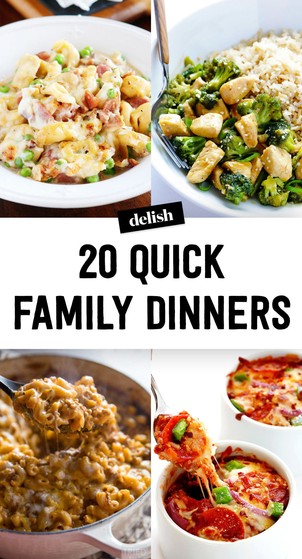 Quick Easy Dinner  easy dinner recipes for family
