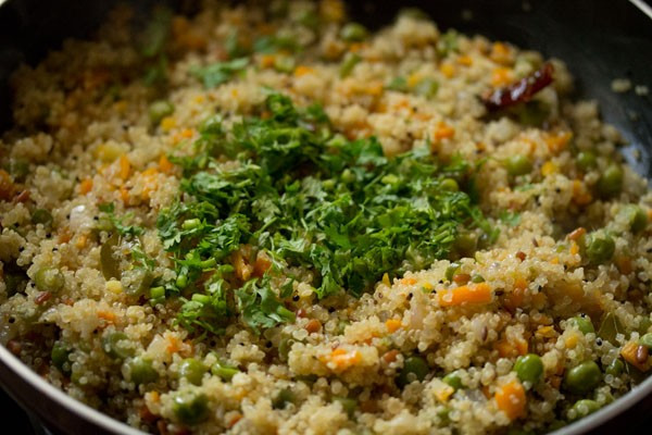 Quinoa Indian Recipes  quinoa upma recipe how to make ve able quinoa upma recipe