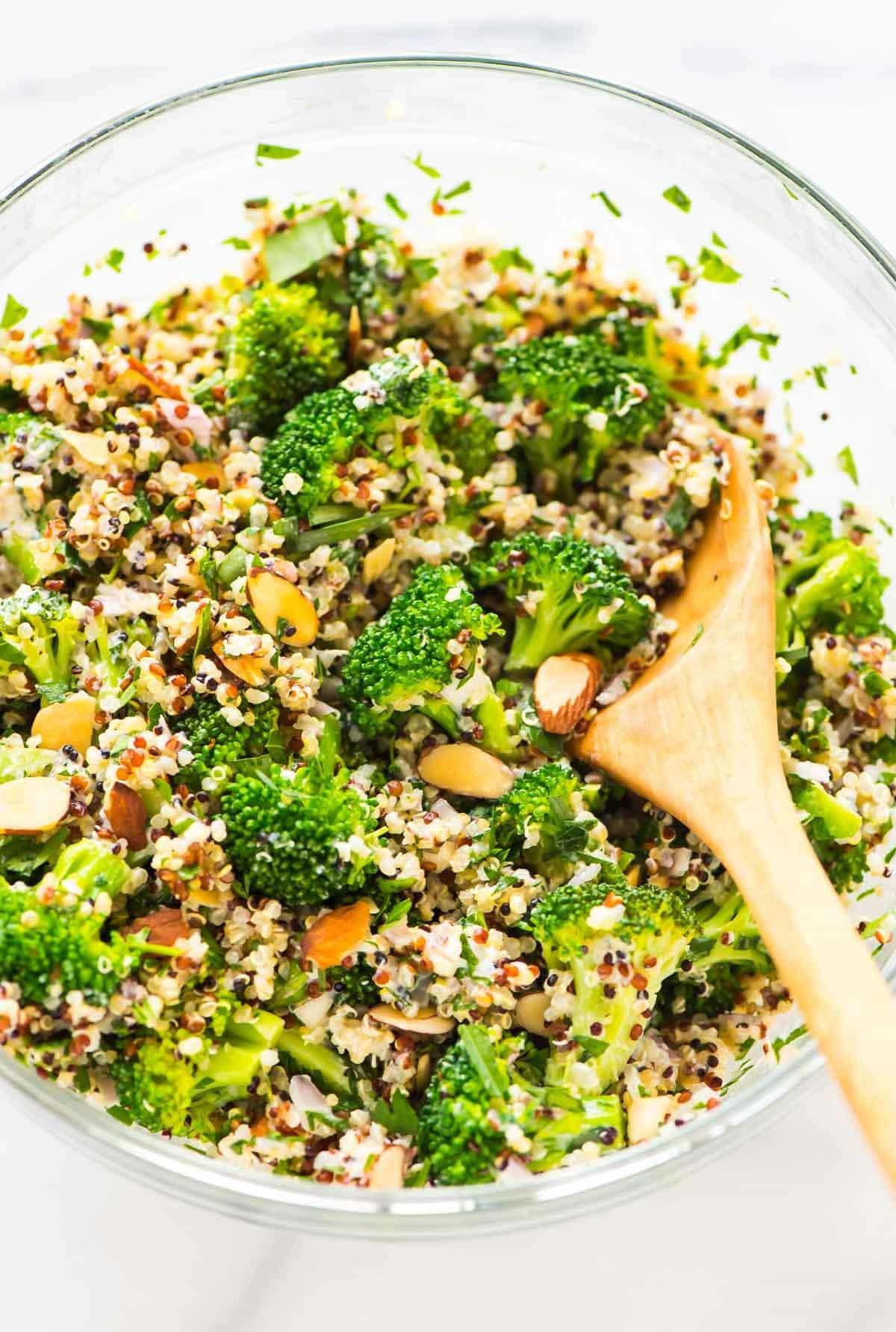 Quinoa Recipes Salad  Broccoli Quinoa Salad with Creamy Lemon Dressing