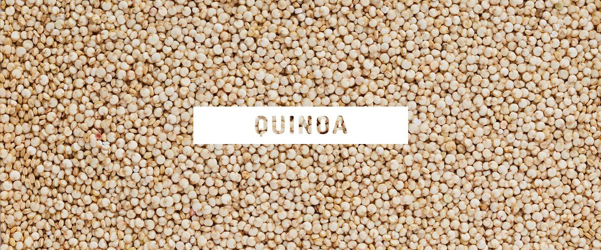 Quinoa Vs White Rice  Quinoa Vs White Rice Thrive Market