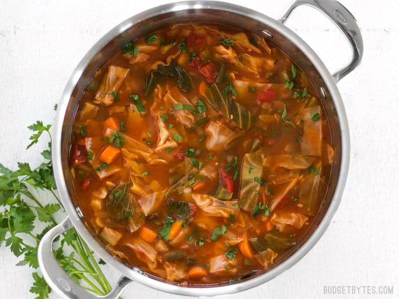 Recipe For Cabbage Soup  red cabbage soup recipes easy