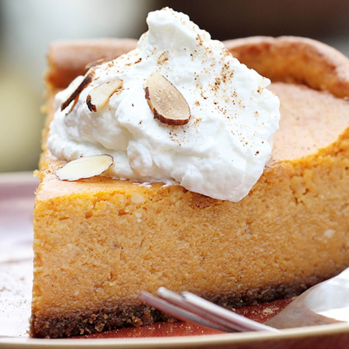 Recipe For Pumpkin Cheesecake  Pumpkin Pie Cheesecake Recipe Dr Axe