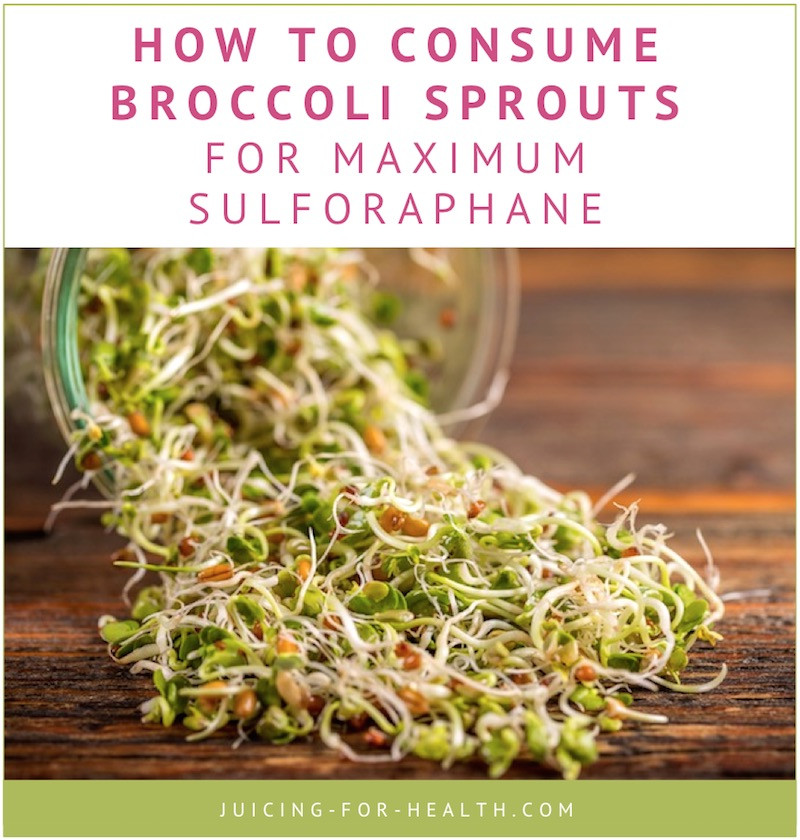 Rhonda Patrick Broccoli Sprouts  Broccoli Sprout Juice Highest Sulforaphane Content To