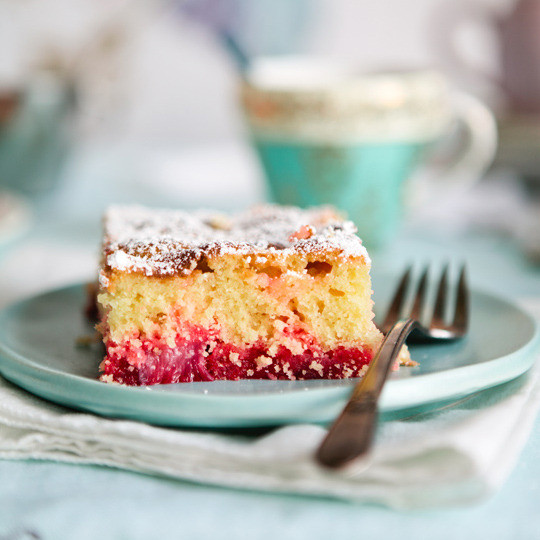 Rhubarb Dessert Recipes  Recipe Big Pink Rhubarb Cake