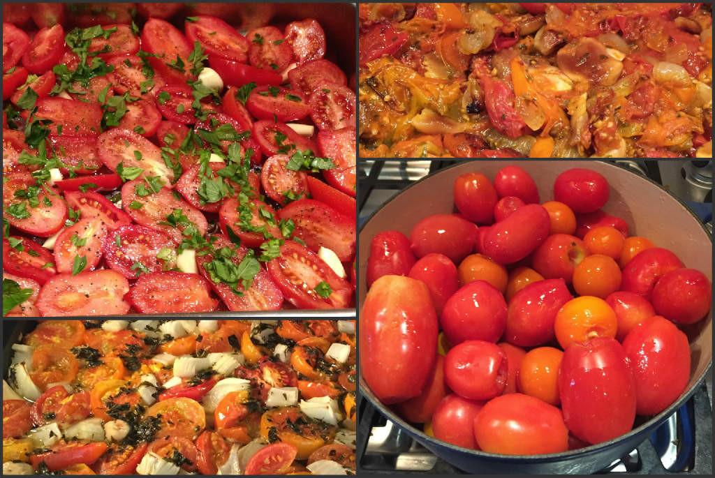 Roma Tomato Sauce  Saucestravaganza Roasted Roma Tomato Sauce Recipe