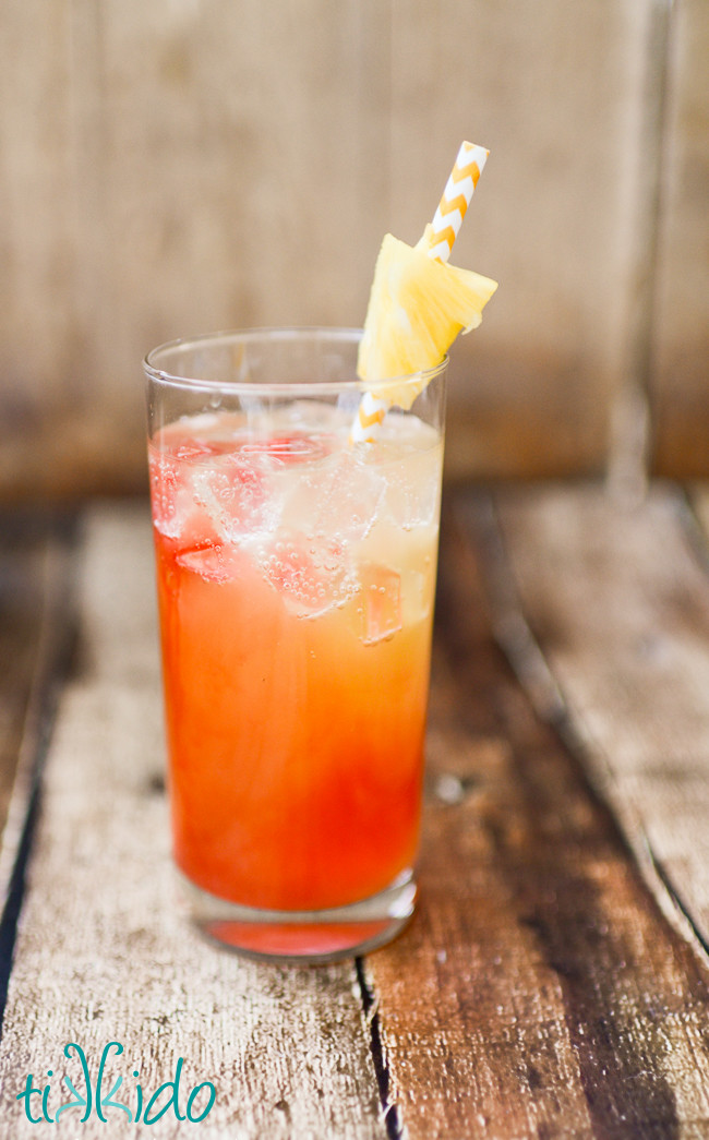 Rum Drinks With Pineapple Juice  Pineapple Coconut Malibu Rum Summer Cocktail Recipe