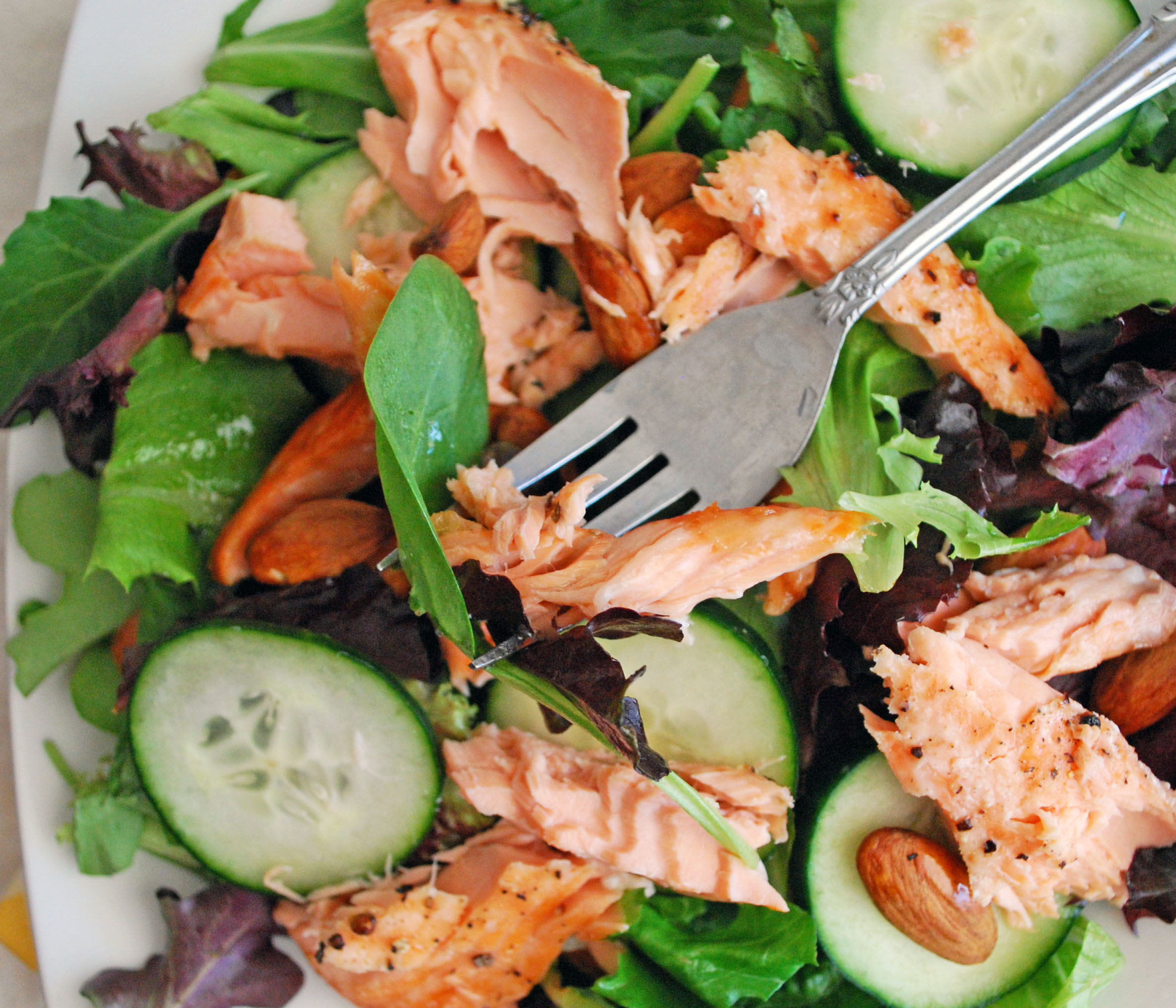 Salad With Salmon  Lazy Lady Salmon Salad The Live In Kitchen