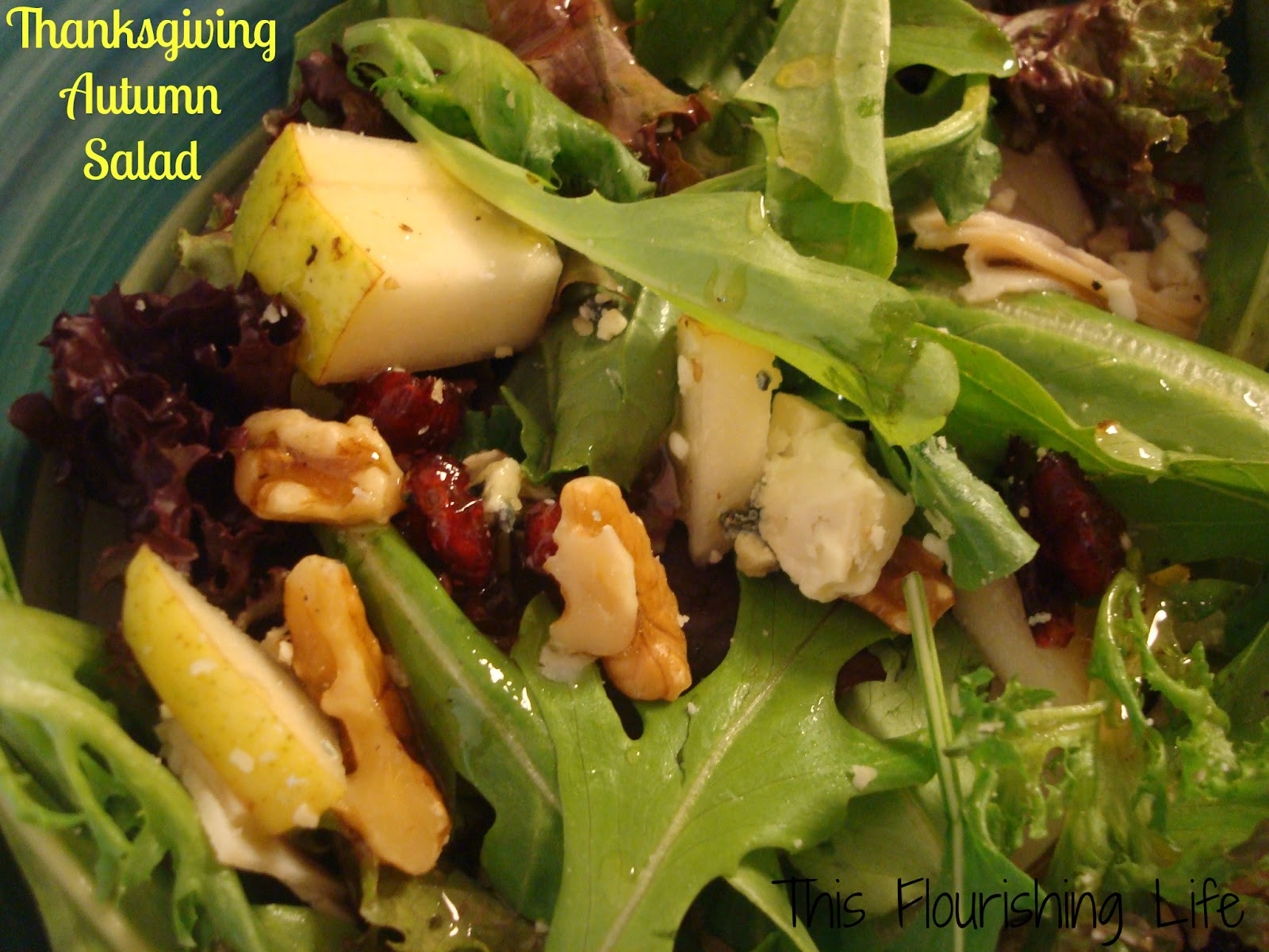 Salads For Thanksgiving  Salad Recipes in Urdu Indian With Chicken Easy Ve arian