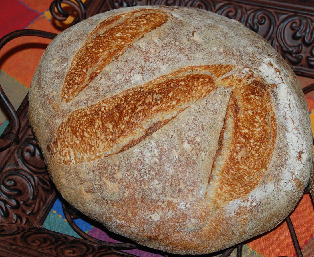 San Francisco Sourdough Bread  San Francisco sourdough