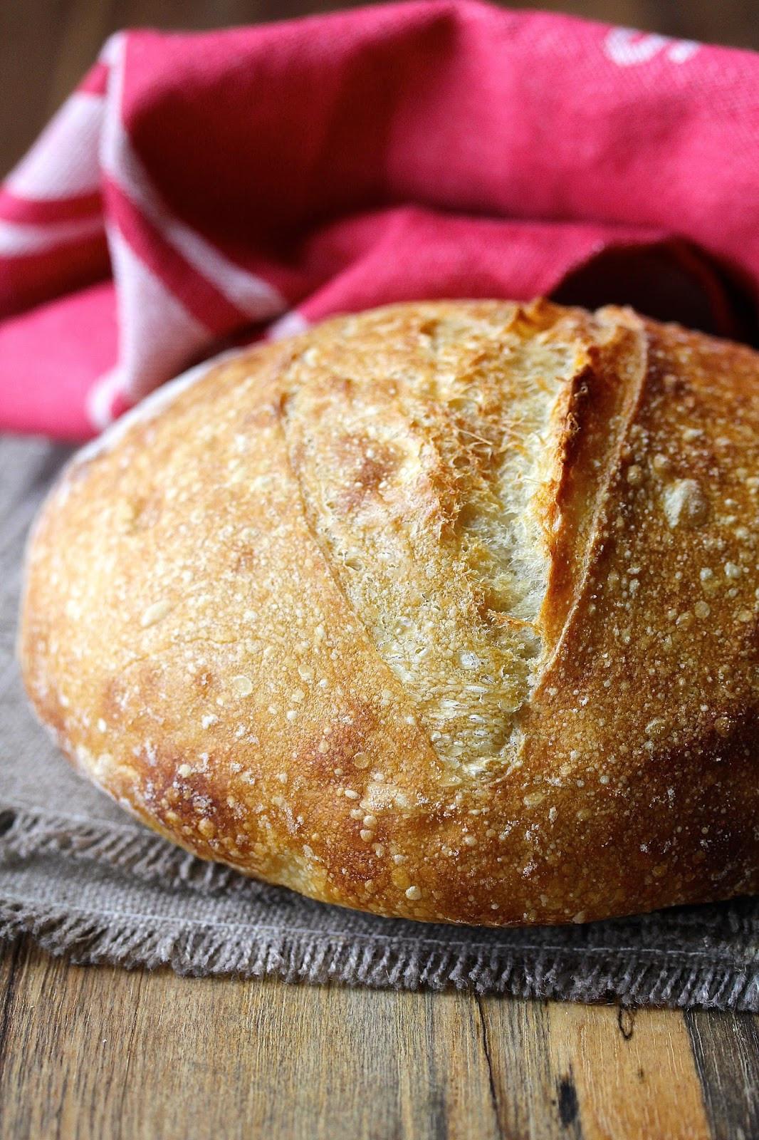 San Francisco Sourdough Bread  Wild Yeast San Francisco Style Sourdough Bread