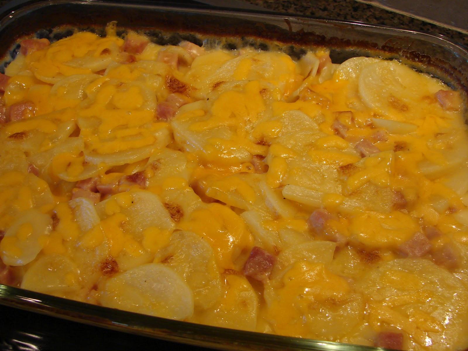 Scalloped Potato Casserole  A Bear in the Kitchen Cheesy Scalloped Potatoes & Ham