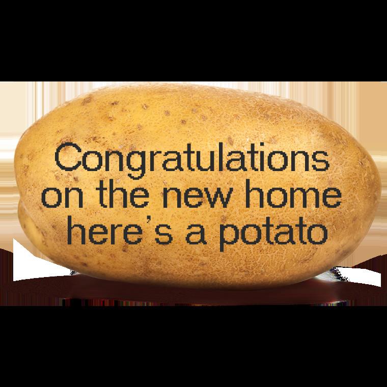 Send A Potato  Send Potato UK