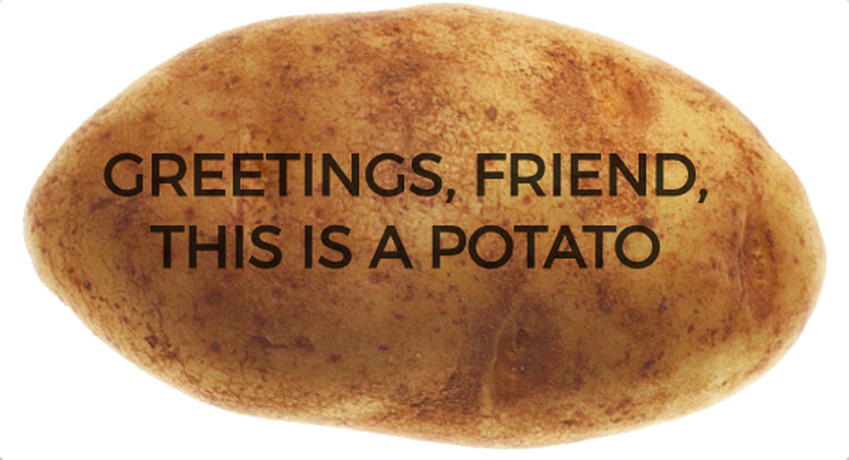 Send A Potato  Why Mail a Postcard When You Can Send a Message Written on