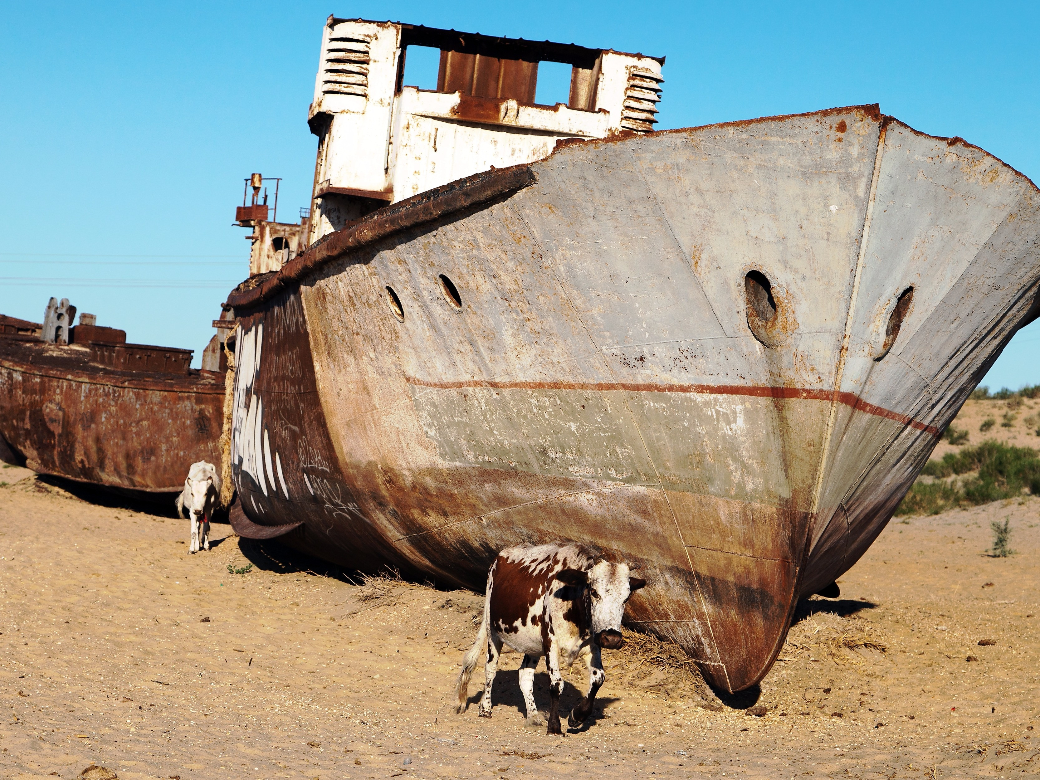 Ships Of The Dessert  9 incredible photos of an eerie ship graveyard in the