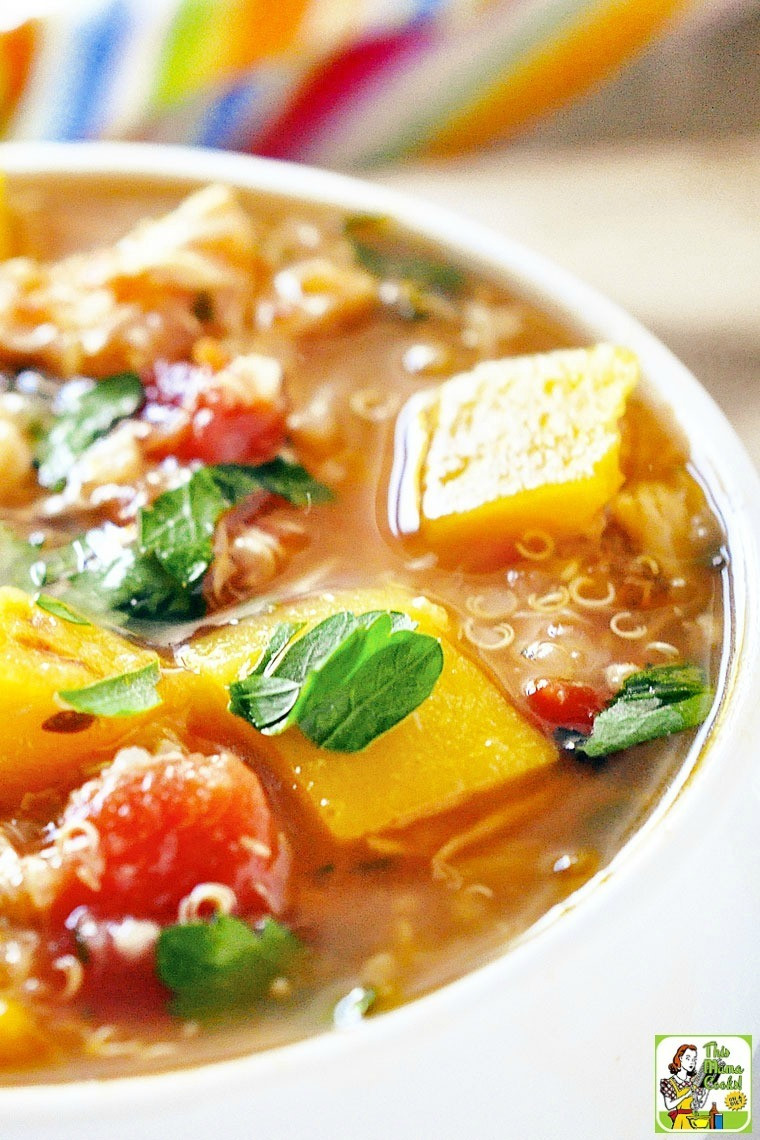 Simple Chicken Stew Recipe  Easy Chicken Stew with Roasted Butternut Squash and Quinoa