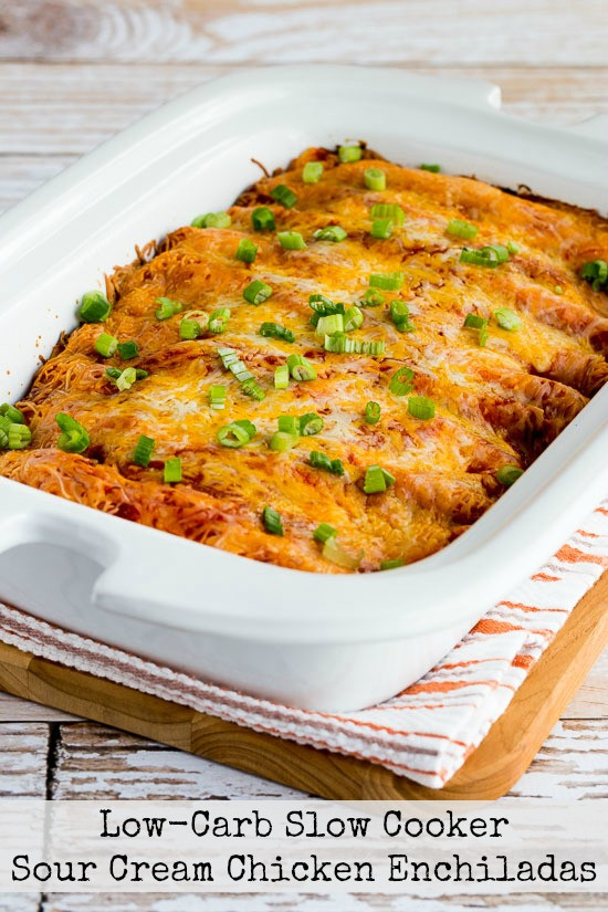 Slow Cooker Chicken Enchiladas  Kalyn s Kitchen Low Carb Slow Cooker Sour Cream Chicken