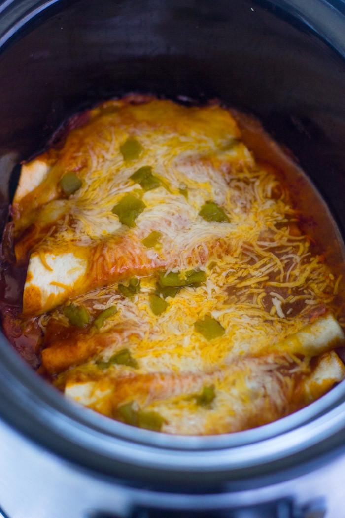 Slow Cooker Chicken Enchiladas  Slow Cooker Chicken Enchiladas