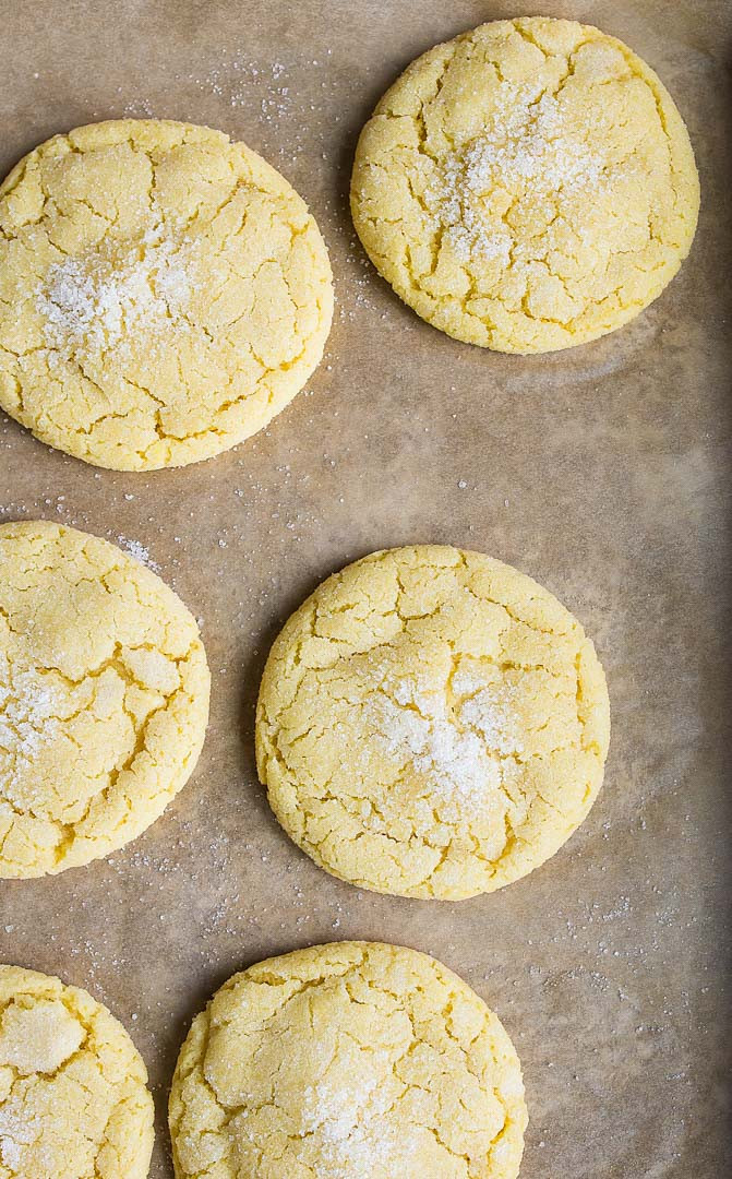 Small Batch Sugar Cookies  Easy Sugar Cookie Recipe small batch Dessert for Two