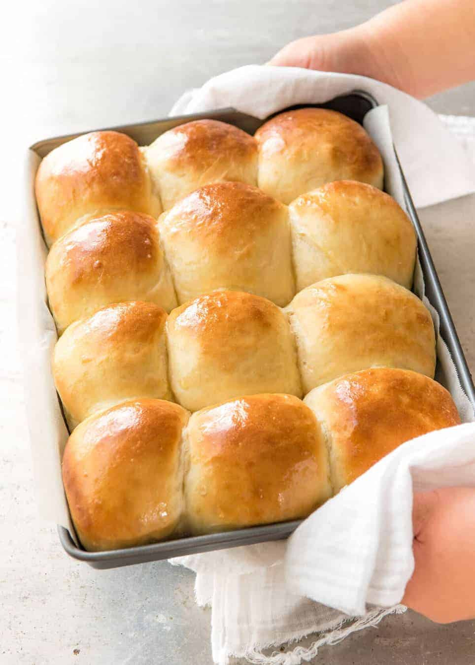 Soft Dinner Rolls  soft dinner rolls without milk