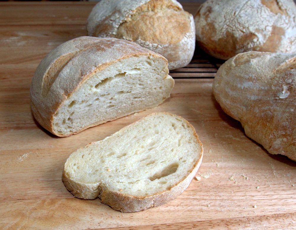 Sourdough Bread Starter  Sourdough Starter Culture Italian Camaldoli x 2 with