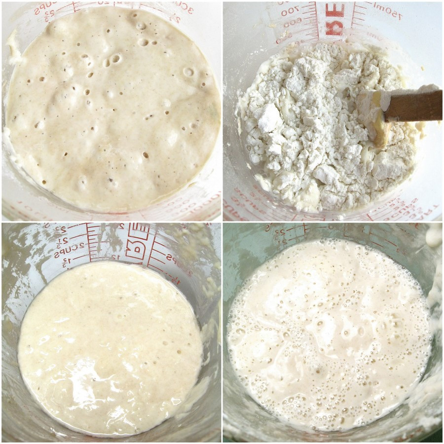 Sourdough Bread Starter  How to make your own sourdough starter Flourish King