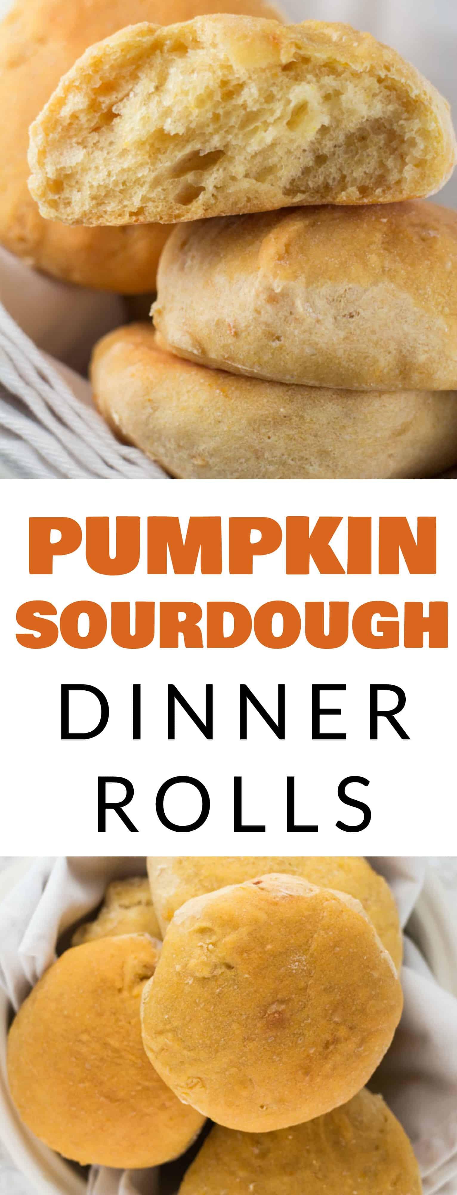 Sourdough Dinner Rolls  Pumpkin Sourdough Dinner Rolls Brooklyn Farm Girl