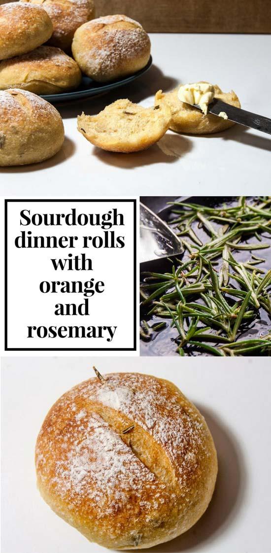 Sourdough Dinner Rolls  Sourdough dinner rolls with orange and rosemary