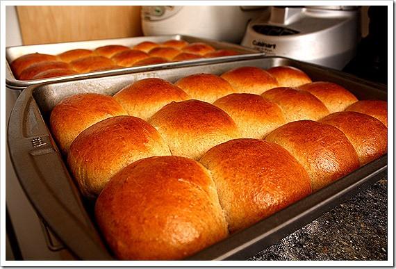 Sourdough Dinner Rolls  Soft pull apart wheat rolls with sourdough starter or