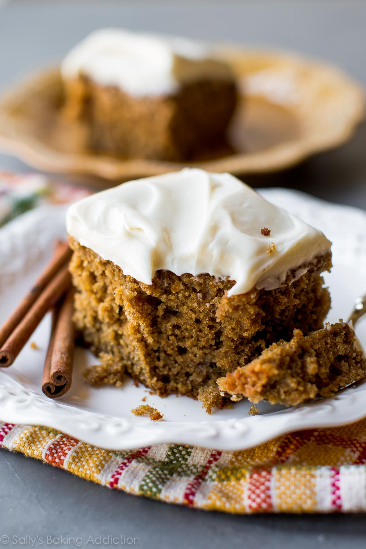 Spice Cake Recipes  Super Moist Spice Cake Sallys Baking Addiction