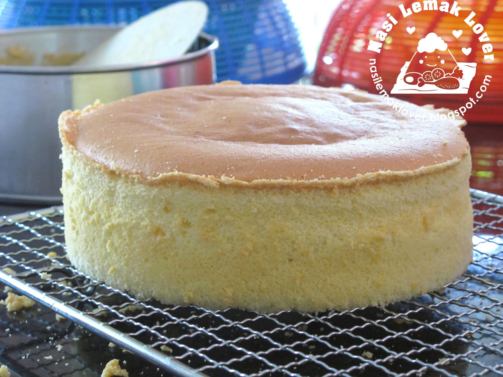 Sponge Cake Recipe  Nasi Lemak Lover Basic Plain Sponge Cake