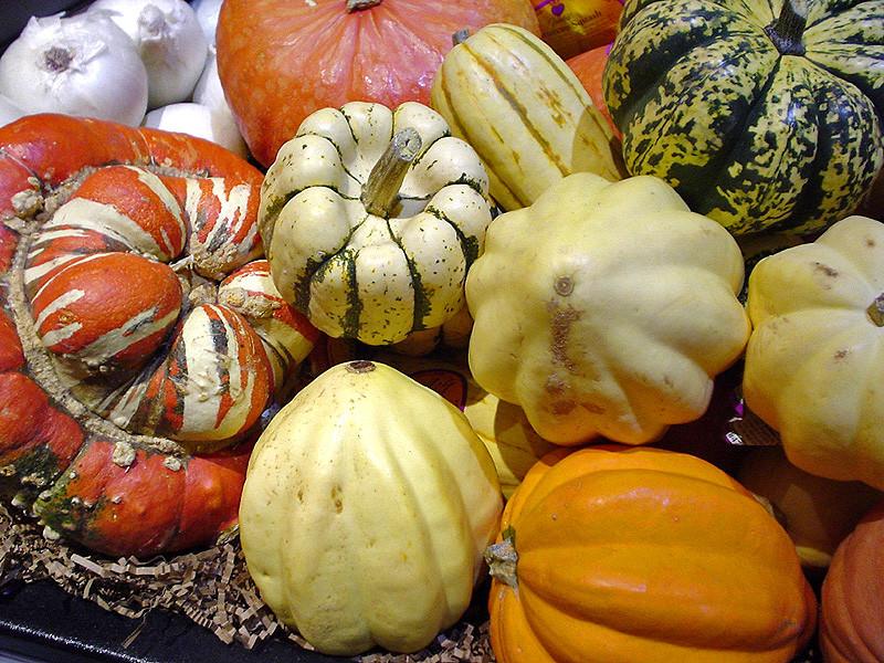 Squash Fruit Or Vegetable  List of food origins