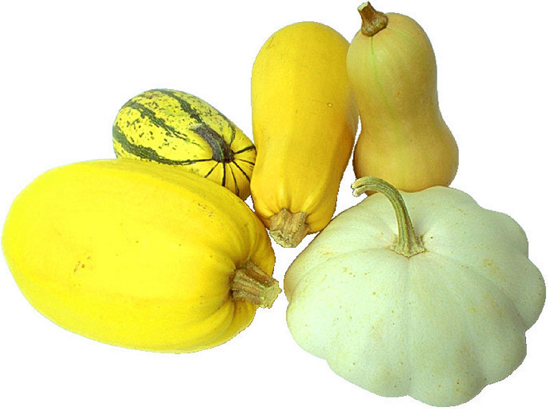 Squash Fruit Or Vegetable  Squashes Fruits And Ve ables