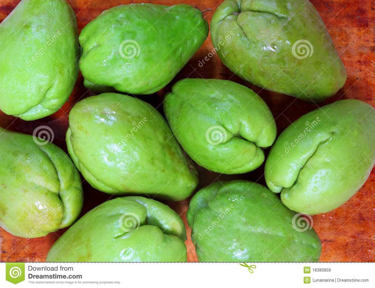 Squash Fruit Or Vegetable  Chayote Mango Squash Mirliton Ve able Stock Image