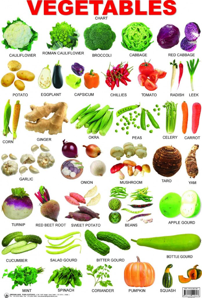 Squash Fruit Or Vegetable  A Great Fruits and Ve ables List Vege Island