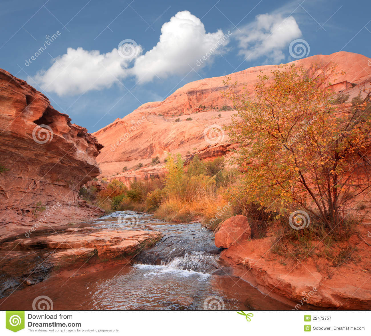 Stream In The Dessert  Stream In The Desert Arches National Park Royalty Free