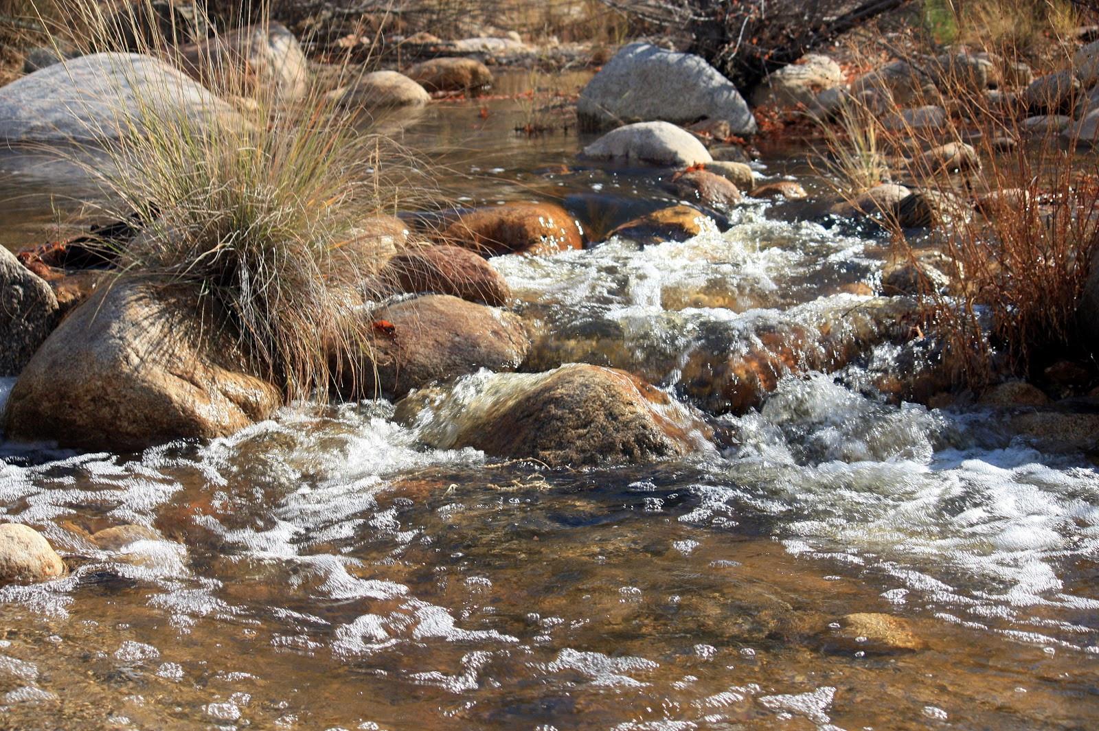 Stream In The Dessert  Rain Trueax streams in the desert