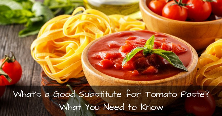 Substitute Tomato Paste For Tomato Sauce  What's a Good Substitute for Tomato Paste What You Need