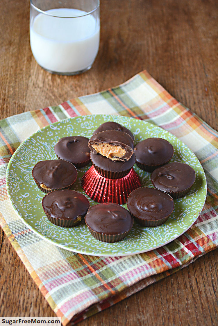 Sugar Free Chocolate Desserts  14 Sinlessly Delicious Sugar Free Chocolate Peanut Butter