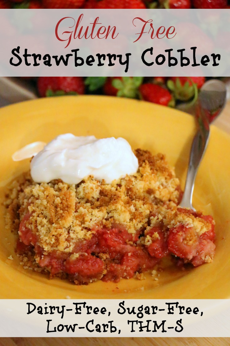 Sugar Free Dairy Free Desserts  Gluten Free Strawberry Cobbler Dairy & Sugar Free Low