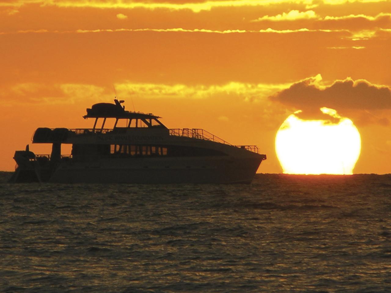 Sunset Dinner Cruise  Maui Sunset Dinner Cruise